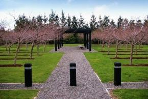 Memorial Cherry Trees at Featherston Remembrance Garden2